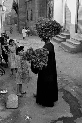 http://kvetchlandia.tumblr.com/post/158222495658/frank-horvat-herb-vendor-cairo-egypt