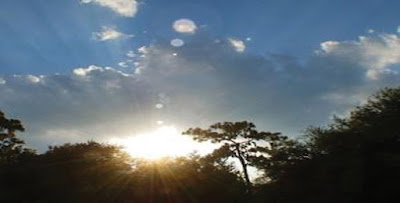 Sunny Tuesday morning in Delhi