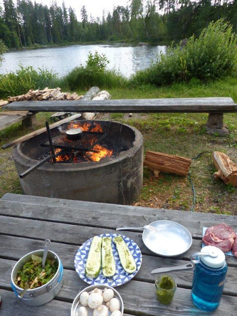 Urlaub Camping mit Hund Schweden Villingsberg See Feuerstelle Grillen Barbeque