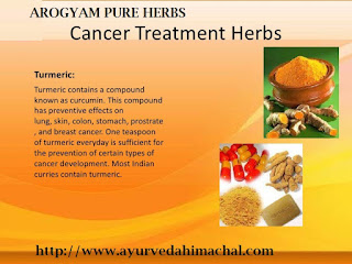 Ayurvedic/ Herbal Treatments For All Diseases: Cancer