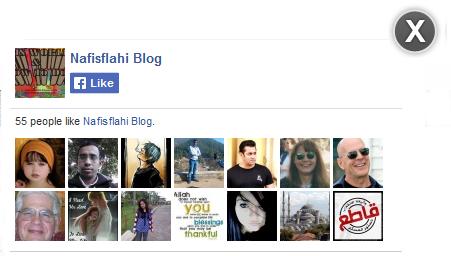 Facebook Like Box