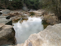 Gorg al torrent de Can Roig
