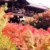 【京都】火燒東福寺