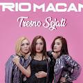 Lirik Lagu Trio Macan - Tresno Sejati dan Terjemahannya