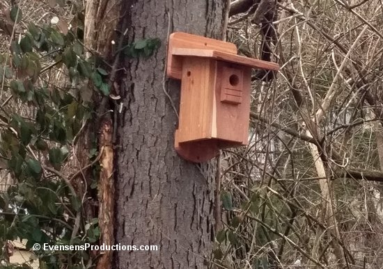 https://www.etsy.com/listing/490700078/outdoor-bird-house-hand-crafted-natural?ref=shop_home_active_1