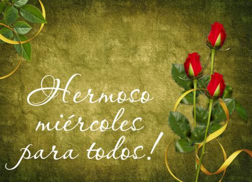 feliz miercoles con rosas