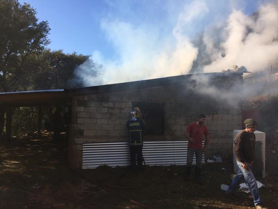 ΛΥΚΟΥΡΙΑ: Ευτυχώς δεν κάηκαν τα ζώα