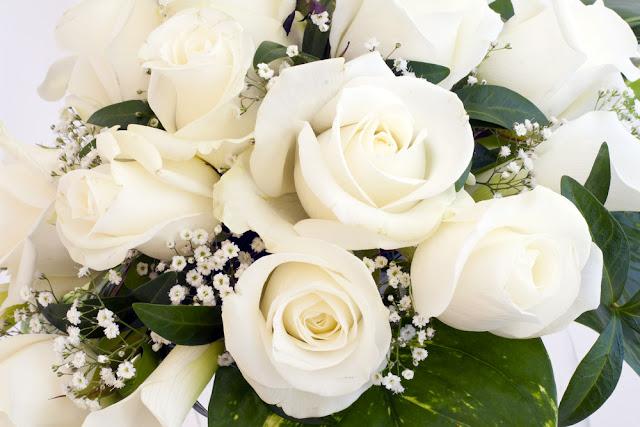 bó hoa hồng trắng đẹp nhất 2017