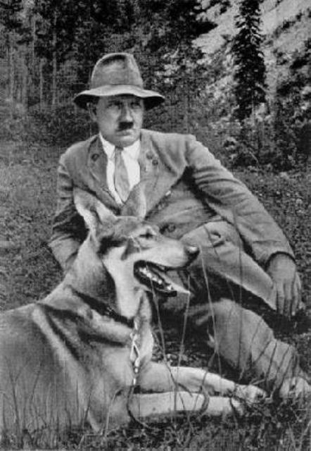 The German Shepherd Hitler With His German Shepherd