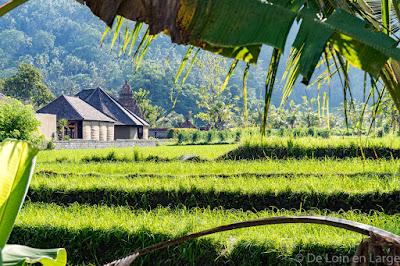 Sidemen - Bali