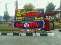 bungabengkulu11