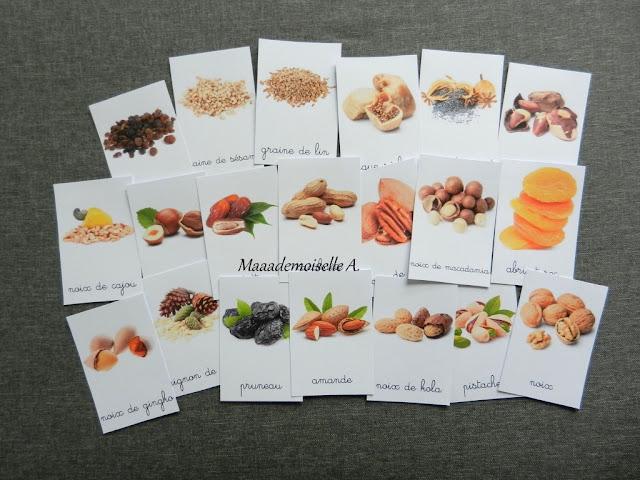|| Cartes de nomenclature ; Fruits secs et graines