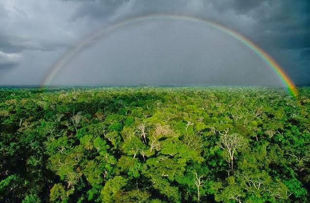 Áreas Protegidas da Amazônia