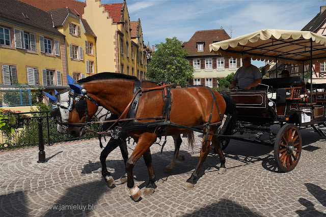 Things to do in Colmar, Alsace, France