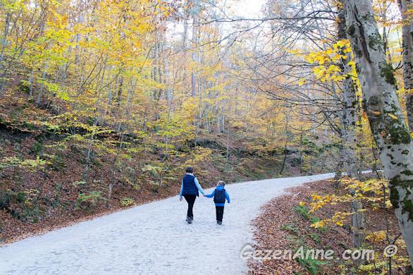 Bolu Yedigöller'de bir sonbahar gezisi