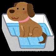 ペットシーツ・トイレシートのイラスト(犬)