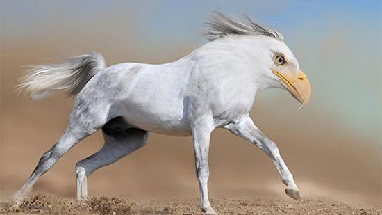 [Menggabungkan 2 Hewan] 10 Manipulasi Hewan Baru yang Lahir Berkat Manipulasi Photoshop (Part 2)