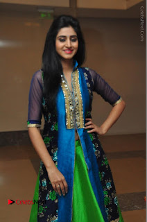 Actress Model Shamili Sounderajan Pos in Desginer Long Dress at Khwaaish Designer Exhibition Curtain Raiser  0025.JPG