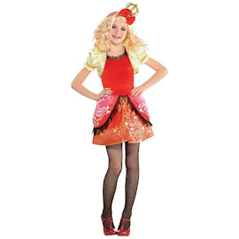 EAH Party City Costumes