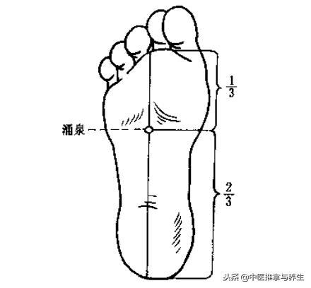 腿部水腫影響美觀怎麼辦?按摩這3個穴位來解決 - 穴道經絡引導
