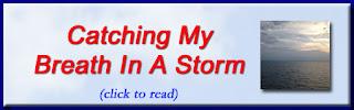 http://mindbodythoughts.blogspot.com/2014/08/catching-my-breath-in-storm.html