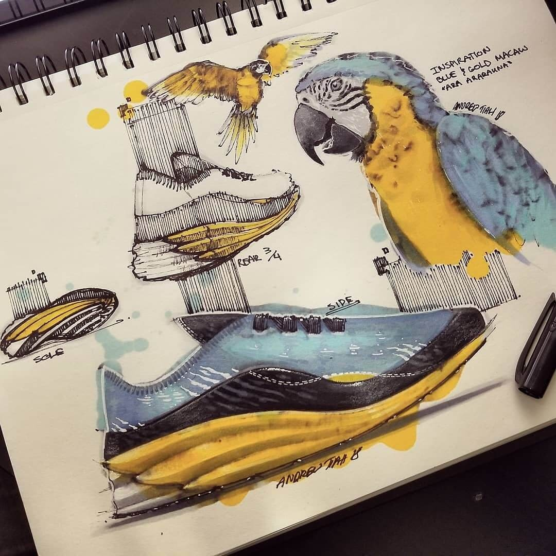 09-Gold-and-Blue-Macaw-Trainers-TiahDesign-Animal-Inspiration-for-Product-Design-www-designstack-co