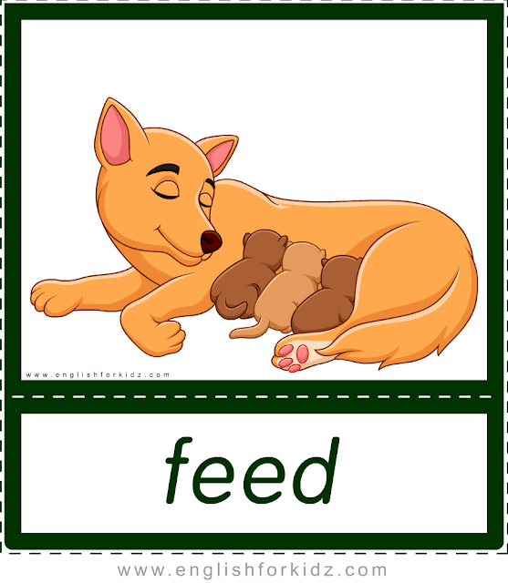 Verb feed (mother dog feeding puppies) - printable animal actions flashcards for English learners