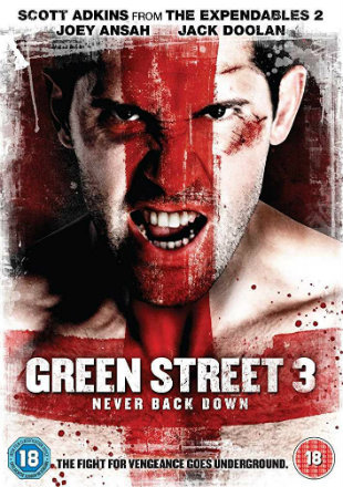Green Street 3: Never Back Down 2013 BRRip Dual Audio