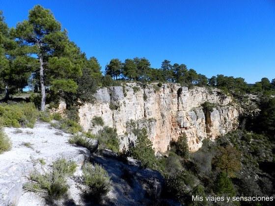 Torcazos, Cañada del Hoyo, Cuenca