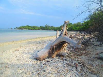 Pantai Kajang Baluran