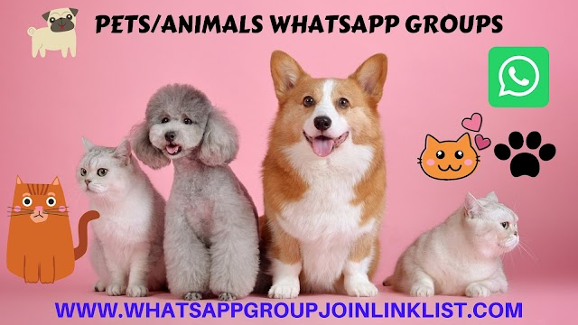 Pets/Animals WhatsApp Group Join Link List