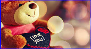 teddy day image 8
