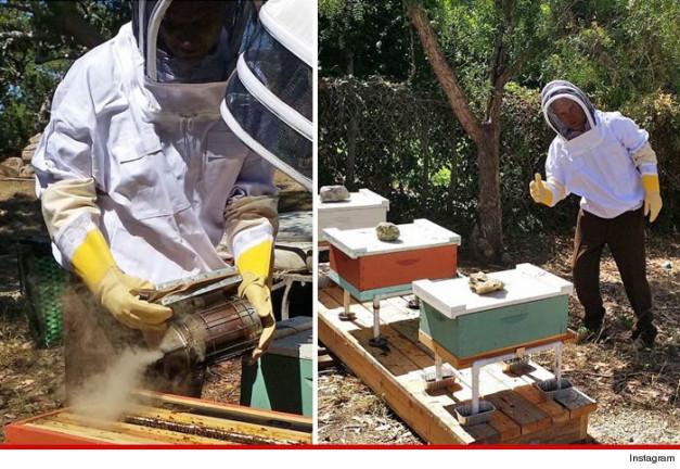 9 Απίστευτα πράγματα που δεν γνωρίζατε για τις μέλισσες