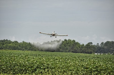 cropdusting farm field with obesogens
