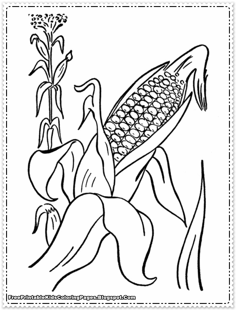 Corn Coloring Pages For Thanksgiving