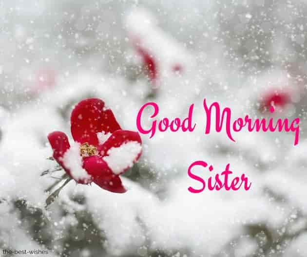 good morning sister pictures