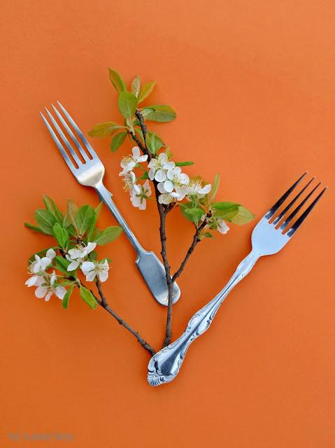 jadalne kwiaty śliwki
