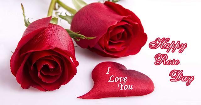 Latest Rose Day Image