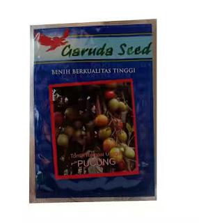 jual-benih-tomat-hibrida.jpg