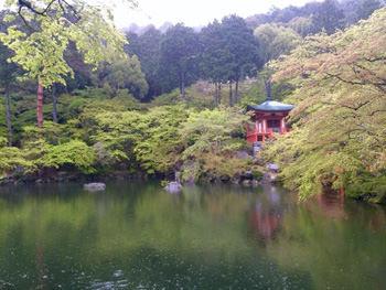 弁天堂の池
