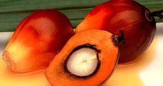 Minyak kelapa sehat