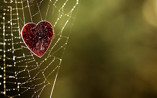 Heart-stuck-in-web-of-love-hd-artistic-pictures-of-love-for-her.jpg