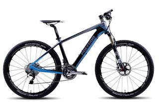 Harga Sepeda Polygon Gunung XC Race