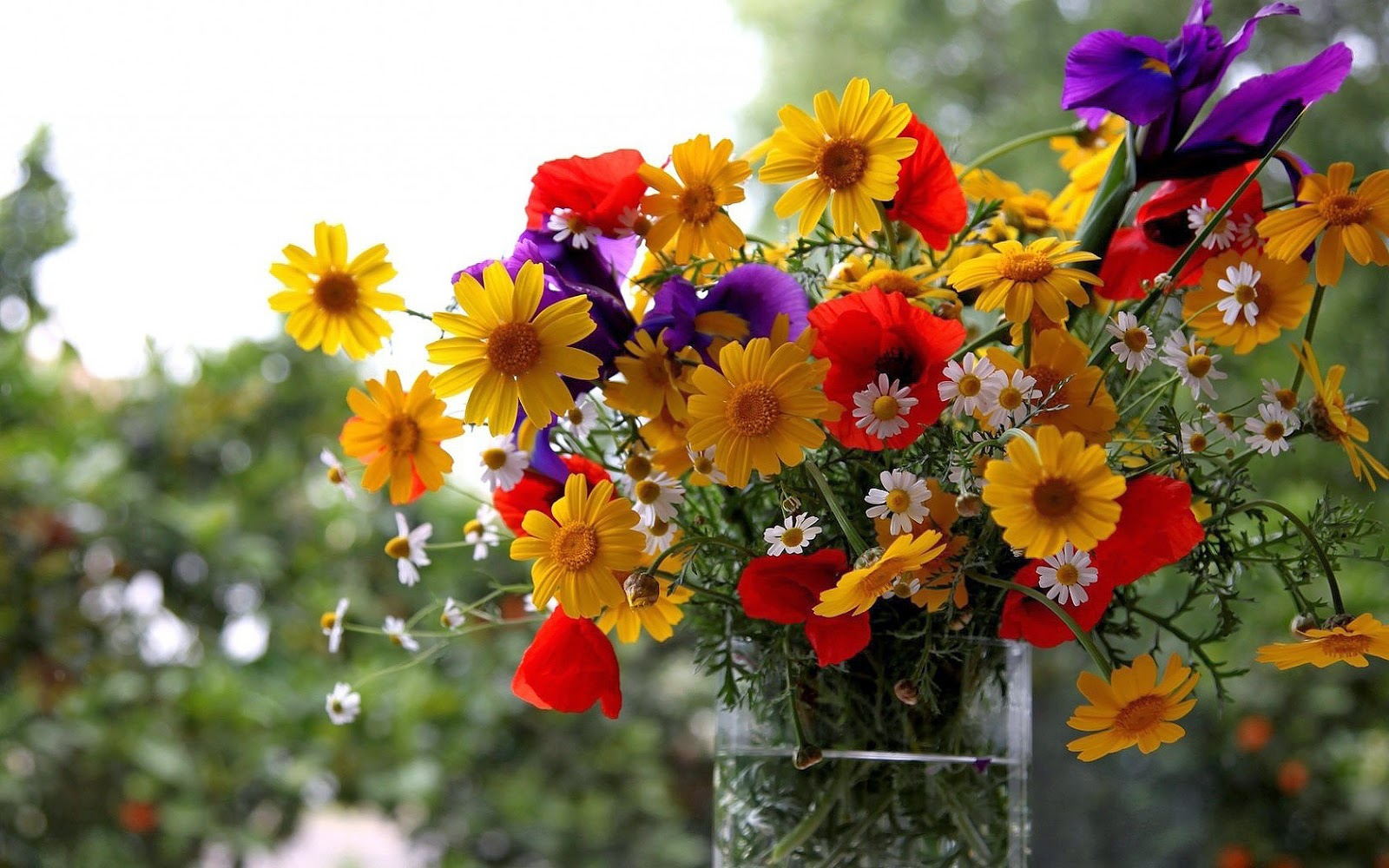 Vaas vol met verschillende soorten bloemen