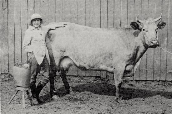 Anne Nash at Skimpans c1916