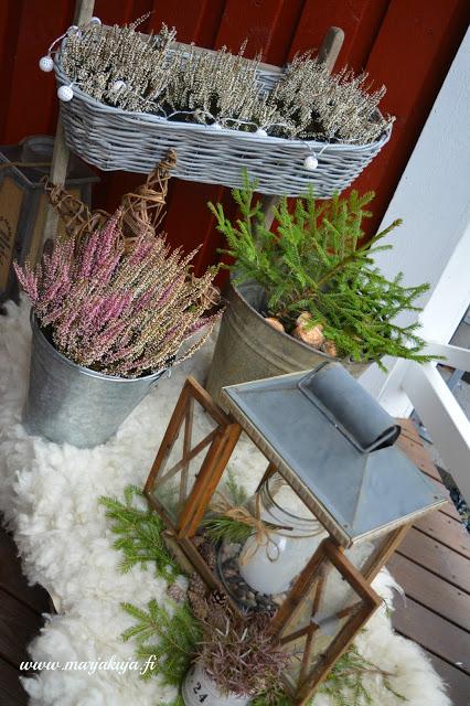 vesikelkka talvinen asetelma terassi