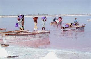 Le Lac Rose is sprinkled with salt miners, using their hands and shovels to collect salt.