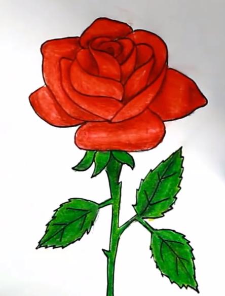 رسم وردة جميلة جداا بسهولة