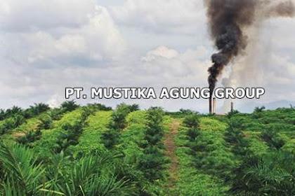 Lowongan Kerja PT. Mustika Agung Group Pekanbaru Februari 2019