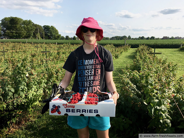 image of a smiling young woman standing in a field carrying a flat of just-picked blackberries and raspberries